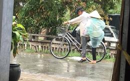 Chứng kiến 2 cụ già đạp xe dưới mưa, có một điều khiến cô gái vô cùng ngưỡng mộ
