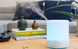 Những sản phẩm làm sạch không khí nên có trong gia đình