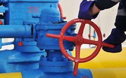 """Nord Stream-2 bế tắc, Nga cũng chẳng cần Ukraine: Kiev liệu có thể nuốt trôi """"trái đắng"""" 3 tỉ USD?"""