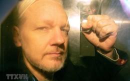 Công tố viên Thụy Điển chính thức đề nghị bắt giữ ông Assange