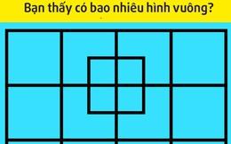 8 câu đố thử thách khả năng toán học: Chỉ đếm ô vuông trong hình thôi cũng khó