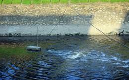 Sông Tô Lịch ra sao sau 3 ngày áp dụng công nghệ 'thần kỳ' từ Nhật Bản?
