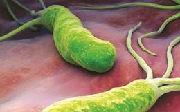 Bé 2 tuổi mang vi khuẩn gây ung thư dạ dày: BS chỉ ra thói quen sai lầm nhà nào cũng mắc
