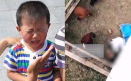 Bé trai 9 tuổi nhảy lầu vì phạm sai lầm nhỏ ở trường: Bố mẹ đừng biến mình từ người thân nhất thành người đáng sợ nhất