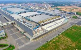 Lợi nhuận Samsung Việt Nam giảm mạnh, công ty sản xuất màn hình Samsung Display Vietnam bất ngờ thua lỗ nghìn tỷ đồng