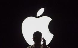 Hỏi xoáy đáp xoay: Apple biết gì và không biết gì về bạn?