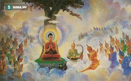 Ba lần gặp mẹ của Đức Phật và đạo lý ai cũng cần thông hiểu trước khi quá muộn