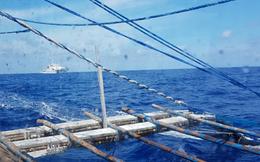 """Ngư dân Philippines kể chuyện tàu cá bị Trung Quốc """"nổ súng cảnh cáo"""" trên Biển Đông"""