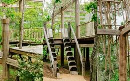 Bí ẩn trong ngôi nhà gỗ giữa rừng của cô gái người Việt ở Pháp