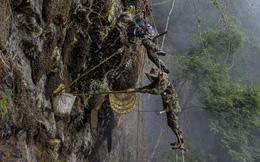 7 ngày qua ảnh: Người đàn ông cheo leo giữa tầng không lấy mật ong bên vách núi ở Trung Quốc