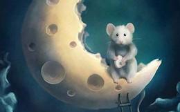 Bạn nhìn thấy chú chuột hay Mặt trăng trước tiên, đáp án sẽ giải mã cách sống của bạn