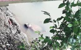 Thấy 'xác' trôi nổi trên sông, người dân gọi báo cảnh sát nhưng khi tới nơi ai cũng 'chạy mất dép'