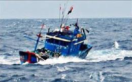 """Tàu cá ở Cà Mau bị tàu chở hàng """"lạ"""" đâm chìm"""