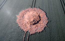 24h qua ảnh: Bom từ thời Thế chiến II phát nổ trên cánh đồng đại mạch