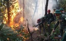 Người phụ nữ bị chết cháy trong quá trình dập lửa cứu rừng