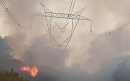 EVN: Hơn 1km đường dây 500kV đoạn Đà Nẵng - Hà Tĩnh đã an toàn sau sự cố cháy rừng