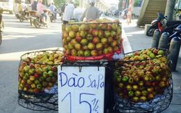 """Thực hư xuất xứ đào Sapa siêu rẻ bán tràn đường và chiêu qua mặt """"móc ví"""" khách hàng"""