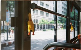 """""""Đàn gà"""" lủng lẳng trên xe buýt và câu chuyện đằng sau khiến dân mạng bật cười"""