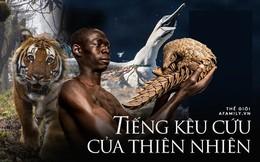 Bức tranh toàn cảnh về sự hủy diệt của con người đối với thiên nhiên và lời cảnh báo cho nhân loại về tương lai bị diệt vong