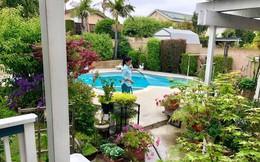 Hồng Vân đưa các con đến thăm biệt thự của Hồng Đào ở Mỹ