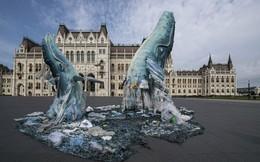 24h qua ảnh: Tượng cá voi khổng lồ làm từ rác dưới đại dương