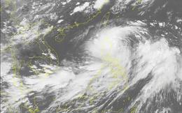 Chủ động ứng phó với bão DANAS gần biển Đông