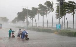 Chủ động ứng phó áp thấp nhiệt đới khả năng mạnh lên thành bão đầu mùa