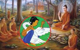 Cứu sống thiên nga từ tay anh họ, Đức Phật chốt lại 1 câu bất cứ ai cũng nên lắng nghe