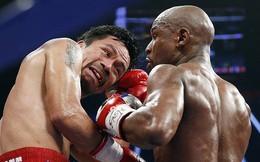'Cay mũi' Mayweather, võ sĩ Pacquiao gửi lời thách đấu