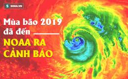 Mùa bão 2019: Cơ quan khí quyển Mỹ ra cảnh báo, xuất hiện yếu tố bất thường, khó lường?