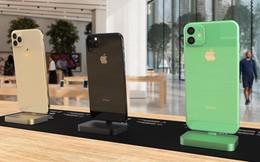 Xuất hiện loạt ảnh 'bằng xương bằng thịt' của bộ 3 iPhone 2019
