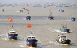 """880 triệu USD/năm và hơn thế: Biển Đông oằn mình hứng chịu thiệt hại """"khủng khiếp"""" do các hoạt động của TQ"""