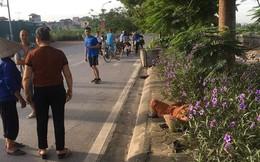 Nữ lao công bị ô tô đâm ở Hà Nội nghi trước khi tử vong kịp viết lại biển số xe gây tai nạn
