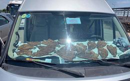 """Cá la liệt trong ô tô và hành động """"có mùi"""" của tài xế khiến hành khách bị ám ảnh"""
