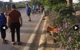 Vụ nữ lao công bị taxi đâm tử vong: Ám ảnh cuộc gọi báo tin dữ lúc sáng sớm