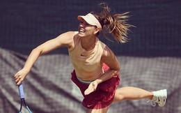'Búp bê Nga' Maria Sharapova diện váy cực ngắn, khoe chân dài miên man trong buổi tập mới nhất
