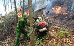 Cháy rừng thông ở Hà Tĩnh lúc giữa trưa, hàng trăm người lại leo rừng dập lửa