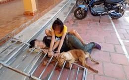 Cặp đôi tình nhân đi trộm chó bị bắt còng lại với nhau