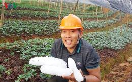 Mưa đá bất thường giữa mùa Hè ở Lào Cai