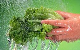 7 cách chế biến thực phẩm giúp bạn tránh xa ngộ độc