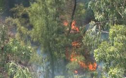 Nghi vấn dân đốt vàng mã Rằm tháng 7 gây cháy rừng ở Nghệ An