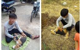 Hình ảnh chàng trai khóc nghẹn, ôm chú chó đã chết khiến nhiều người thương cảm