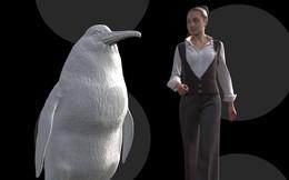 Chim cánh cụt khổng lồ có kích thước bằng con người từng xuất hiện cách đây 66 triệu năm