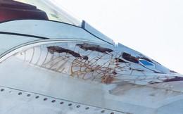 Sự thật về lớp phủ tàng hình bong tróc của tiêm kích F-22 Không quân Mỹ
