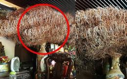 Bát hương khổng lồ ở Phú Thọ khiến bao người trầm trồ, nhưng dân mạng phát hiện sự thật khác