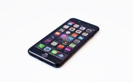 FCC điều tra thông tin iPhone 7 vượt mức bức xạ cho phép