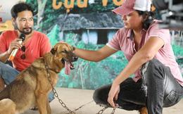 """Vụ chọn chó Nhật vào vai """"Cậu Vàng"""": Tranh cãi kịch liệt,  cư dân mạng vô cùng bức xúc"""