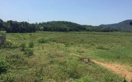 Thu hồi đất giao trái luật cho mẹ và chị gái của Giám đốc Sở Kế hoạch - Đầu tư Hà Nội