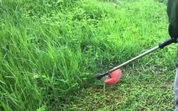 Bé gái bị máy cắt cỏ chém thủng bụng, gia đình dùng kim chỉ thường khâu sống không gây tê