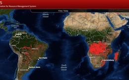 Bloomberg: Cháy rừng khủng khiếp ở Brazil cũng chỉ xếp thứ 3 về số lượng